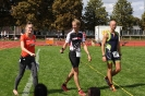 Celler Triathlon 2016 - Impressionen_33