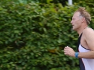 Celler Triathlon 2016 - Laufen_39