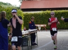 Celler Triathlon 2016 - Laufen_45