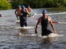 Celler Triathlon 2016 - Schwimmen_120