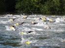 Celler Triathlon 2016 - Schwimmen_48