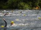 Celler Triathlon 2016 - Schwimmen_49