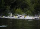 Celler Triathlon 2016 - Schwimmen_6