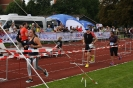 Celler Triathlon 2017 - Laufen_77