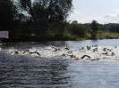 Celler Triathlon 2017 - Schwimmen_105
