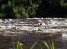 Celler Triathlon 2017 - Schwimmen_109