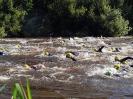 Celler Triathlon 2017 - Schwimmen_110