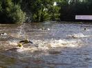 Celler Triathlon 2017 - Schwimmen_112