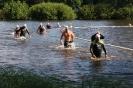 Celler Triathlon 2017 - Schwimmen_69